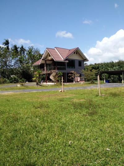 บ้านเดี่ยวสองชั้น 4300000 ตรัง นาโยง ช่อง